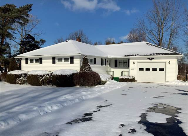 5 Meadowbrook Drive, Albion, NY 14411 (MLS #R1247158) :: Updegraff Group