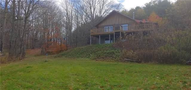 5819 Camp Trail, Prattsburgh, NY 14873 (MLS #R1247275) :: The CJ Lore Team | RE/MAX Hometown Choice