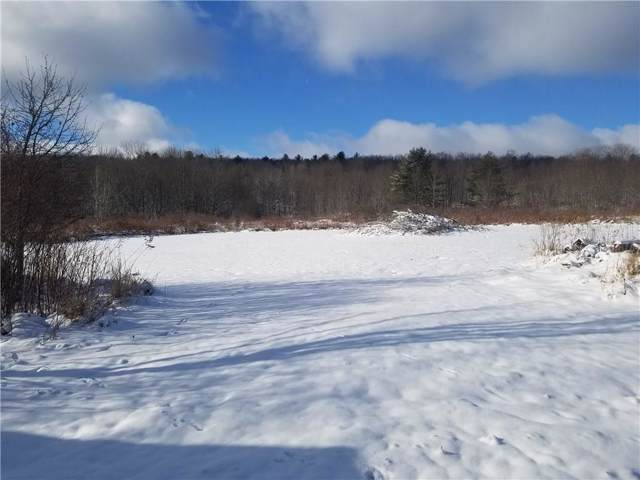 7943 Peavy Road, Angelica, NY 14709 (MLS #R1247717) :: Robert PiazzaPalotto Sold Team