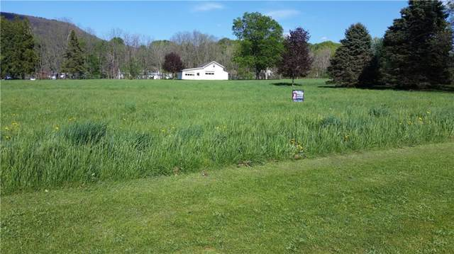 0 Greenmount Avenue, North Dansville, NY 14437 (MLS #R1248037) :: Thousand Islands Realty