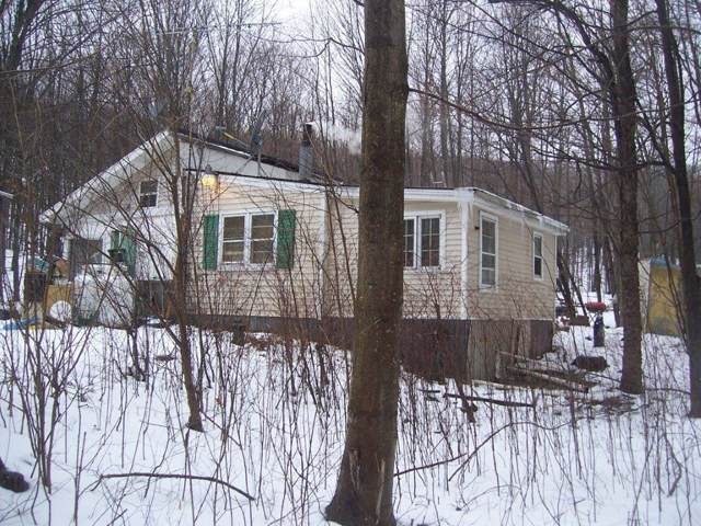 7976 Dutch Hollow Road, Springwater, NY 14572 (MLS #R1248226) :: 716 Realty Group