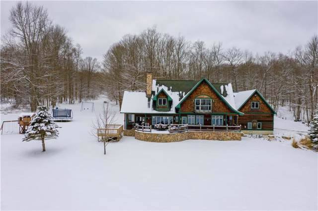 3725 Pickard Road, Ellery, NY 14782 (MLS #R1248679) :: The CJ Lore Team | RE/MAX Hometown Choice