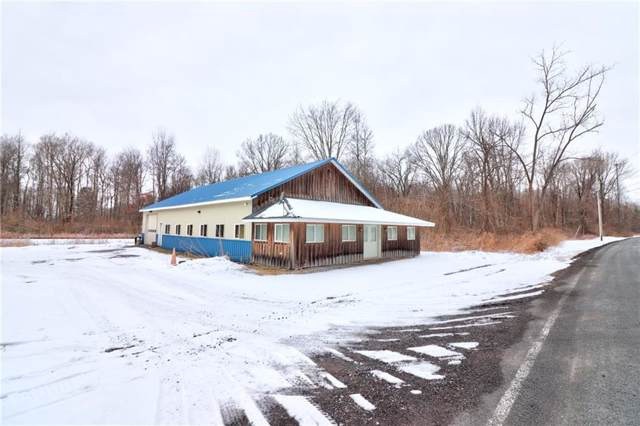 2154 Welch Road, Phelps, NY 14456 (MLS #R1249447) :: Updegraff Group