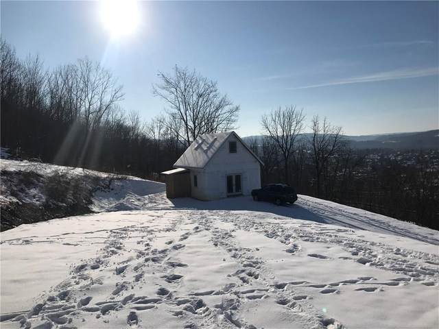 14 Depot Road, North Dansville, NY 14437 (MLS #R1249782) :: Updegraff Group