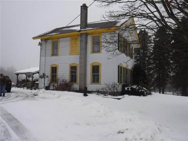 10053 Route 242, Napoli, NY 14755 (MLS #R1250279) :: BridgeView Real Estate Services