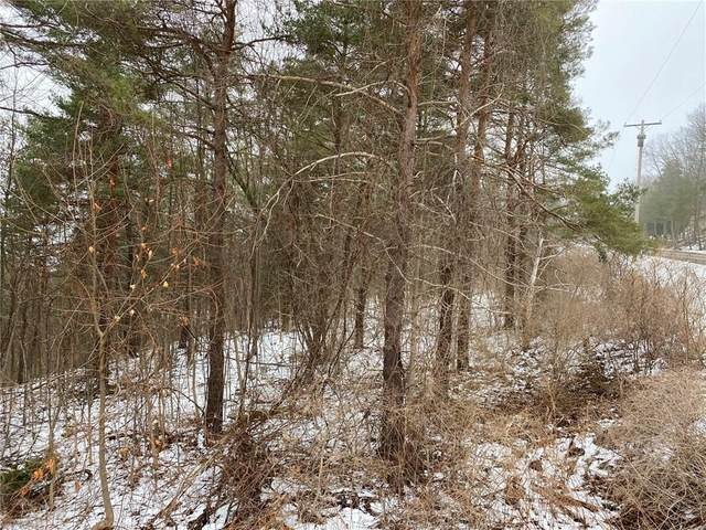 6600 S Old Bald Hill Road, Canadice, NY 14560 (MLS #R1250886) :: MyTown Realty