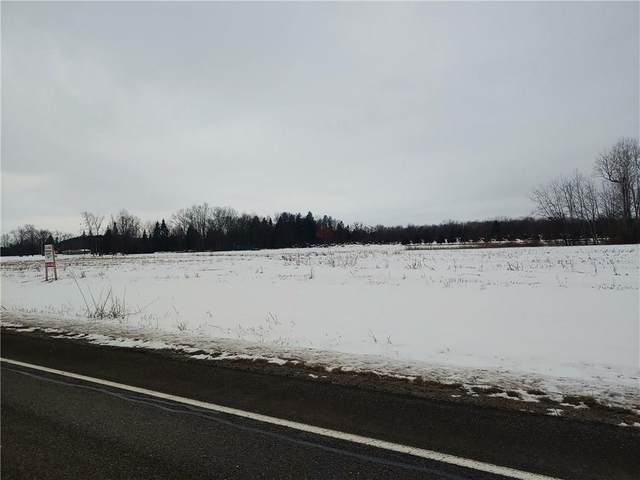0 State Route 14, Phelps, NY 14456 (MLS #R1251543) :: BridgeView Real Estate Services