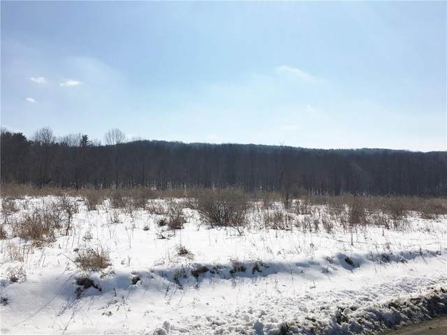0 Pleasant Valley Road, Alfred, NY 14803 (MLS #R1251787) :: MyTown Realty