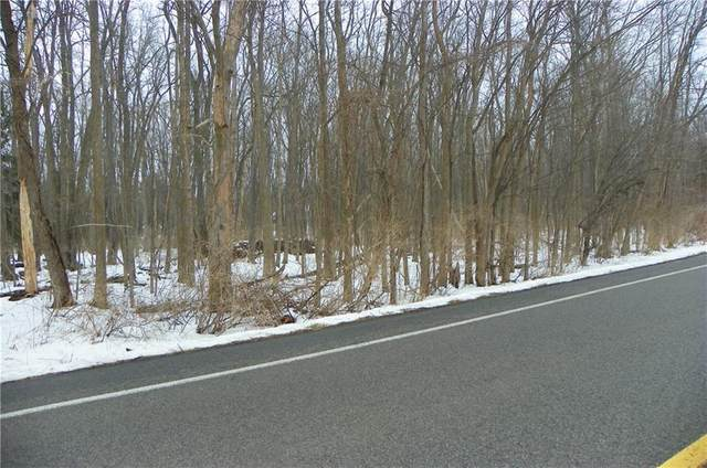0 Orchard Road, Webster, NY 14580 (MLS #R1251984) :: The CJ Lore Team | RE/MAX Hometown Choice