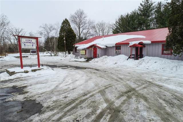 2303 Mecklenburg Road, Enfield, NY 14850 (MLS #R1252308) :: 716 Realty Group