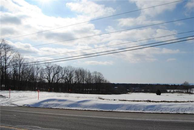 00 Lot 18 Route 5 And 20, East Bloomfield, NY 14469 (MLS #R1252698) :: BridgeView Real Estate Services