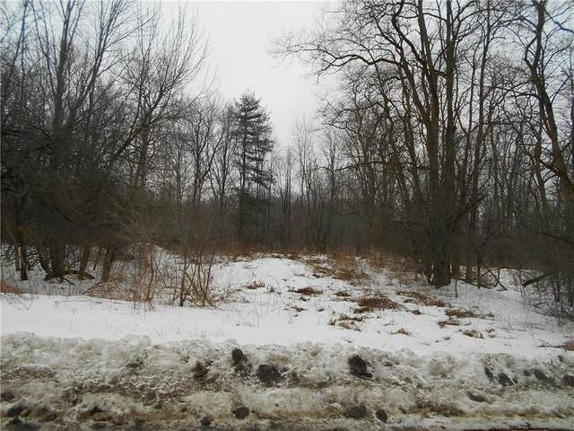0 Bigelow Hill Road, Tyrone, NY 14887 (MLS #R1253550) :: Updegraff Group