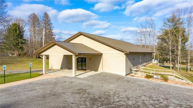 8751 State Route 21, Naples, NY 14512 (MLS #R1254069) :: Robert PiazzaPalotto Sold Team