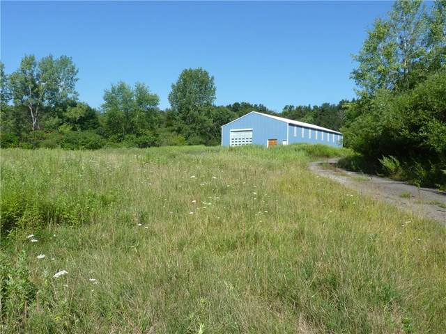 1645 Forest Avenue Extension, Busti, NY 14701 (MLS #R1254656) :: 716 Realty Group