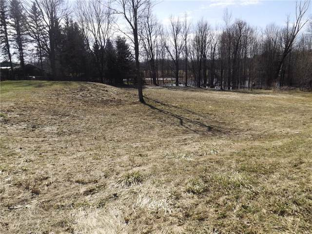 0 Lot 1 Greenfield Drive, Marion, NY 14505 (MLS #R1256309) :: 716 Realty Group