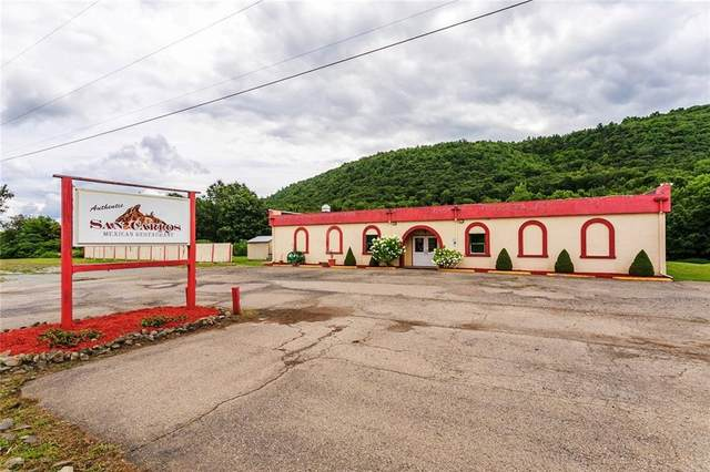 7500 State Route 54 Highway, Urbana, NY 14810 (MLS #R1257094) :: Lore Real Estate Services