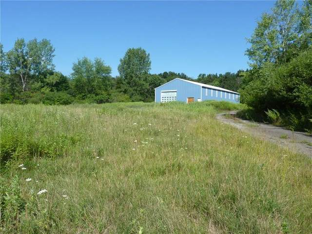 1645 Forest Avenue Extension, Busti, NY 14701 (MLS #R1258099) :: Robert PiazzaPalotto Sold Team