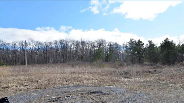 2557 Cannan Road, East Bloomfield, NY 14469 (MLS #R1258734) :: Updegraff Group
