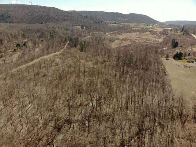0 State Route 21, Naples, NY 14512 (MLS #R1258801) :: Robert PiazzaPalotto Sold Team