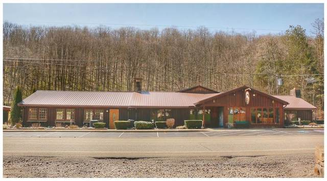12045 Bone Run Road, South Valley, NY 14738 (MLS #R1261613) :: BridgeView Real Estate Services