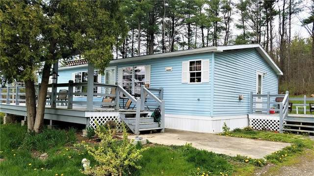 3994 State Route 414, Hector, NY 14818 (MLS #R1262844) :: 716 Realty Group