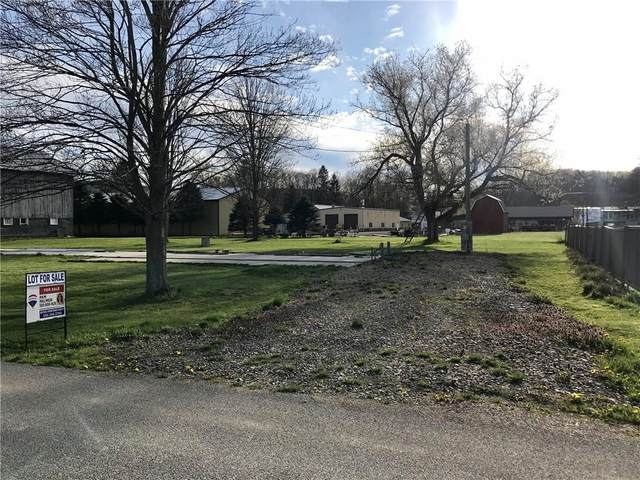V/L County Road 46 Road, Caneadea, NY 14717 (MLS #R1262934) :: Updegraff Group