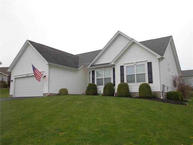 19 Berry Grove Lane, Clarkson, NY 14420 (MLS #R1264295) :: Robert PiazzaPalotto Sold Team