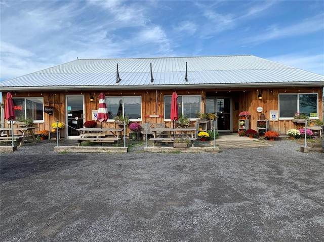 9632 Route 96 - Brews & Brats, Covert, NY 14486 (MLS #R1265185) :: Lore Real Estate Services