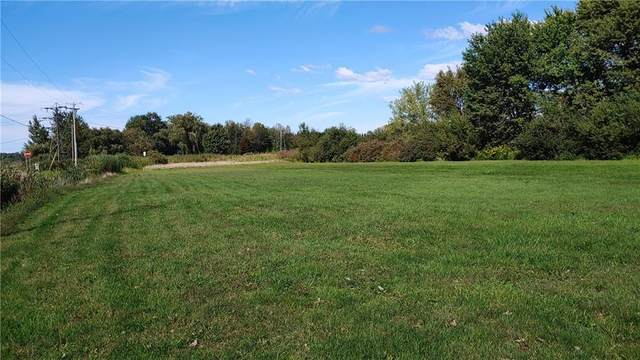 0 Route 20 & Old Main Rd, Sheridan, NY 14136 (MLS #R1265512) :: The Chip Hodgkins Team
