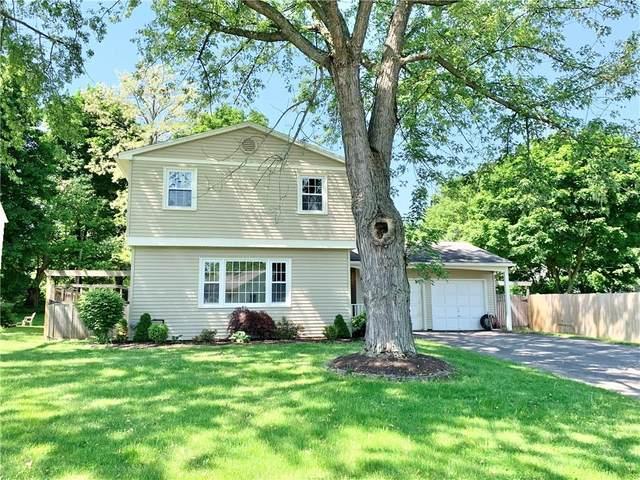 16 Homestead Drive, Perinton, NY 14450 (MLS #R1265623) :: Robert PiazzaPalotto Sold Team