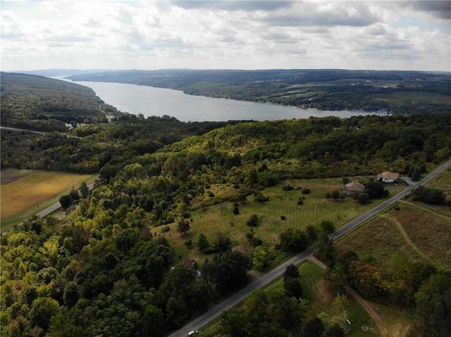 0 Esperanza Road, Jerusalem, NY 14478 (MLS #R1265980) :: Updegraff Group