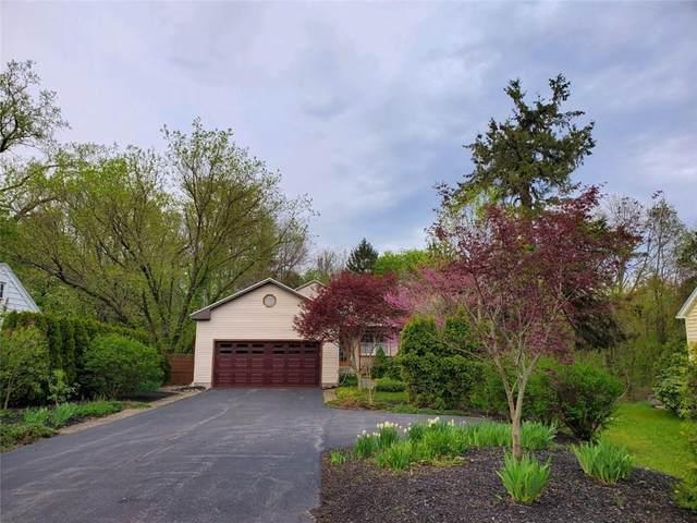 58 Fenton Road, Chili, NY 14624 (MLS #R1266148) :: Lore Real Estate Services