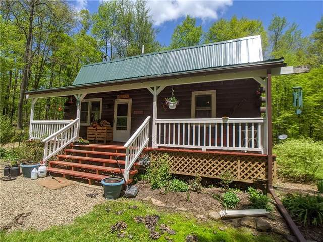 9566 Lafever Road, Clarksville, NY 14727 (MLS #R1267064) :: BridgeView Real Estate Services