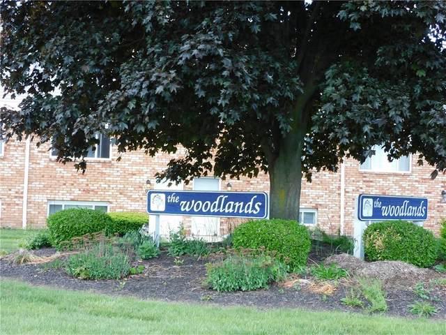 78 Woodlands Way, Sweden, NY 14420 (MLS #R1268143) :: Robert PiazzaPalotto Sold Team