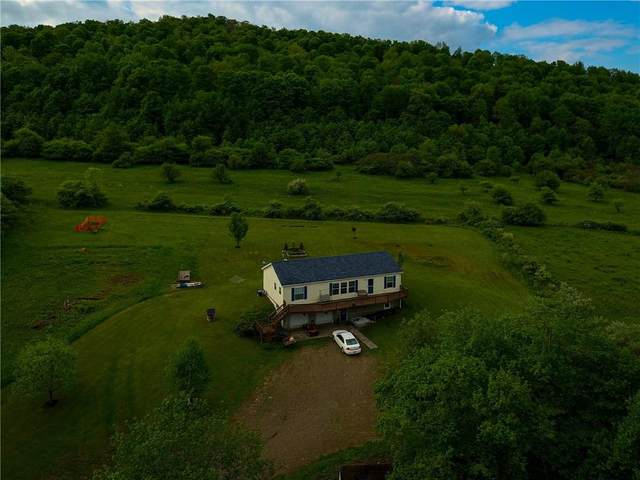 3529-3531 Cherry Valley Road, Allegany, NY 14706 (MLS #R1268200) :: Robert PiazzaPalotto Sold Team