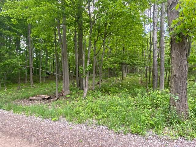 00 E Valley Road N, Jerusalem, NY 14527 (MLS #R1268531) :: Updegraff Group
