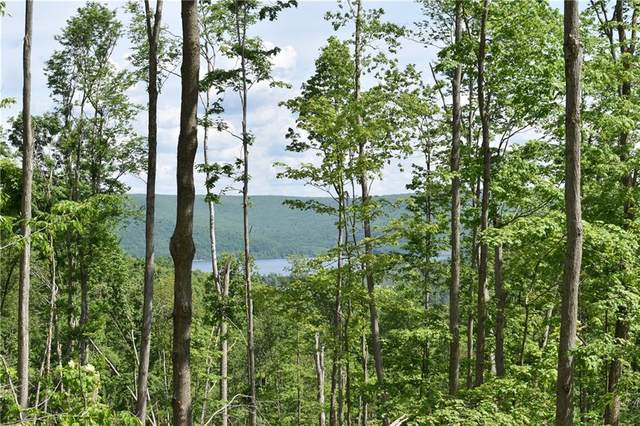 0 Bone Run Road, South Valley, NY 14738 (MLS #R1270461) :: Lore Real Estate Services