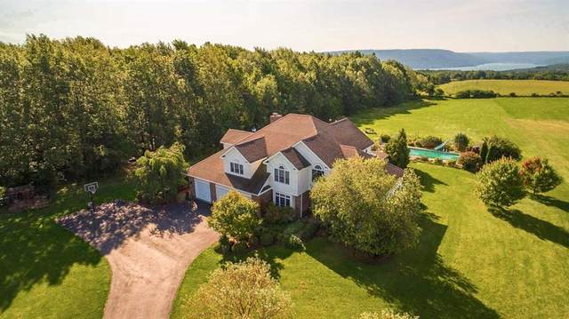 5973 County Road 16, Canandaigua-Town, NY 14424 (MLS #R1274588) :: Updegraff Group