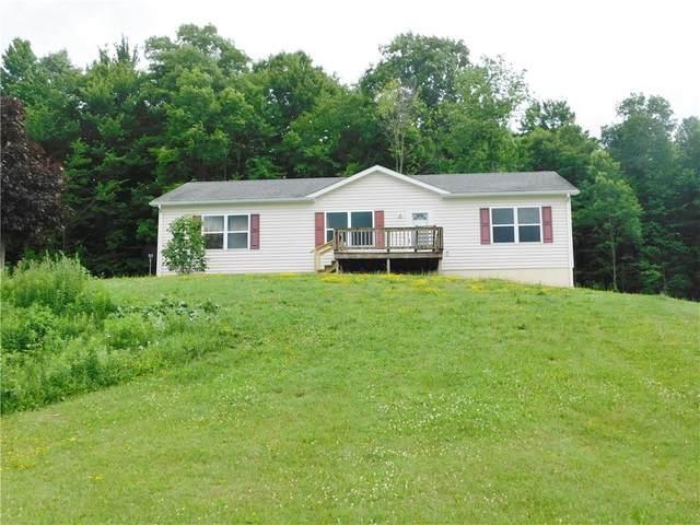 9154 Strobel Road, Dansville, NY 14807 (MLS #R1275555) :: MyTown Realty