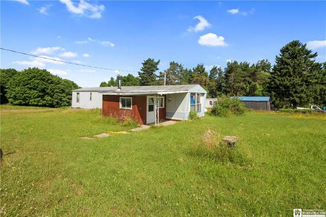 6893 Nelson Road, Charlotte, NY 14782 (MLS #R1275663) :: 716 Realty Group