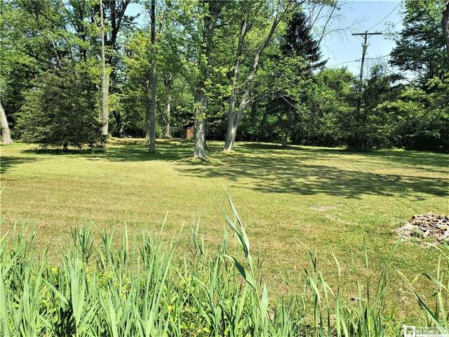 0 Lake Road (Van Buren Bay), Pomfret, NY 14048 (MLS #R1277549) :: Lore Real Estate Services