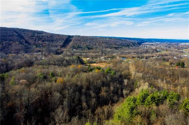 1960 State Route 14, Montour, NY 14865 (MLS #R1278778) :: Robert PiazzaPalotto Sold Team