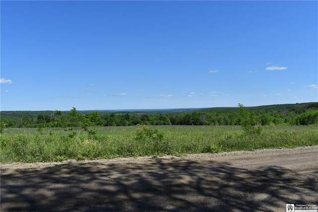 0 Eggleston Hill Road, North Harmony, NY 14781 (MLS #R1279165) :: 716 Realty Group