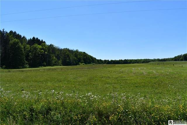 0 Eggleston Hill Road, North Harmony, NY 14781 (MLS #R1279170) :: 716 Realty Group