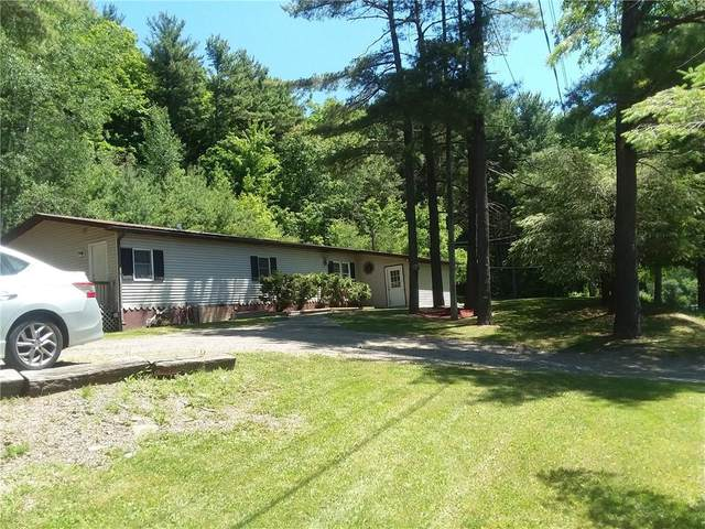 7445 County Route 74, Prattsburgh, NY 14873 (MLS #R1279378) :: Robert PiazzaPalotto Sold Team