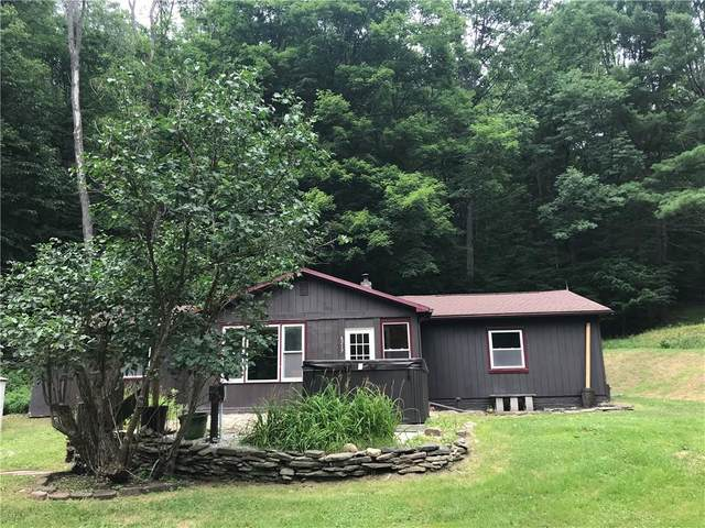 6217 Cunningham Creek Road, Hornellsville, NY 14823 (MLS #R1280452) :: 716 Realty Group