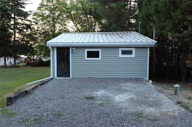 6701 Upper Drive, Castile, NY 14427 (MLS #R1281148) :: Robert PiazzaPalotto Sold Team