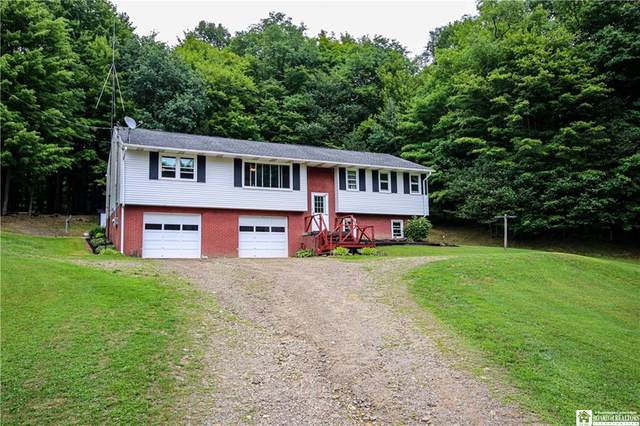 766 S Main Street Extension, Busti, NY 14701 (MLS #R1281274) :: BridgeView Real Estate Services