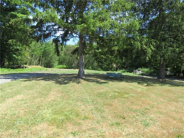 5372 Lake Road S, Sweden, NY 14420 (MLS #R1283231) :: 716 Realty Group