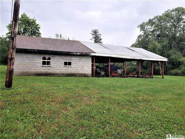 3515 Straight Road, Arkwright, NY 14063 (MLS #R1283789) :: TLC Real Estate LLC
